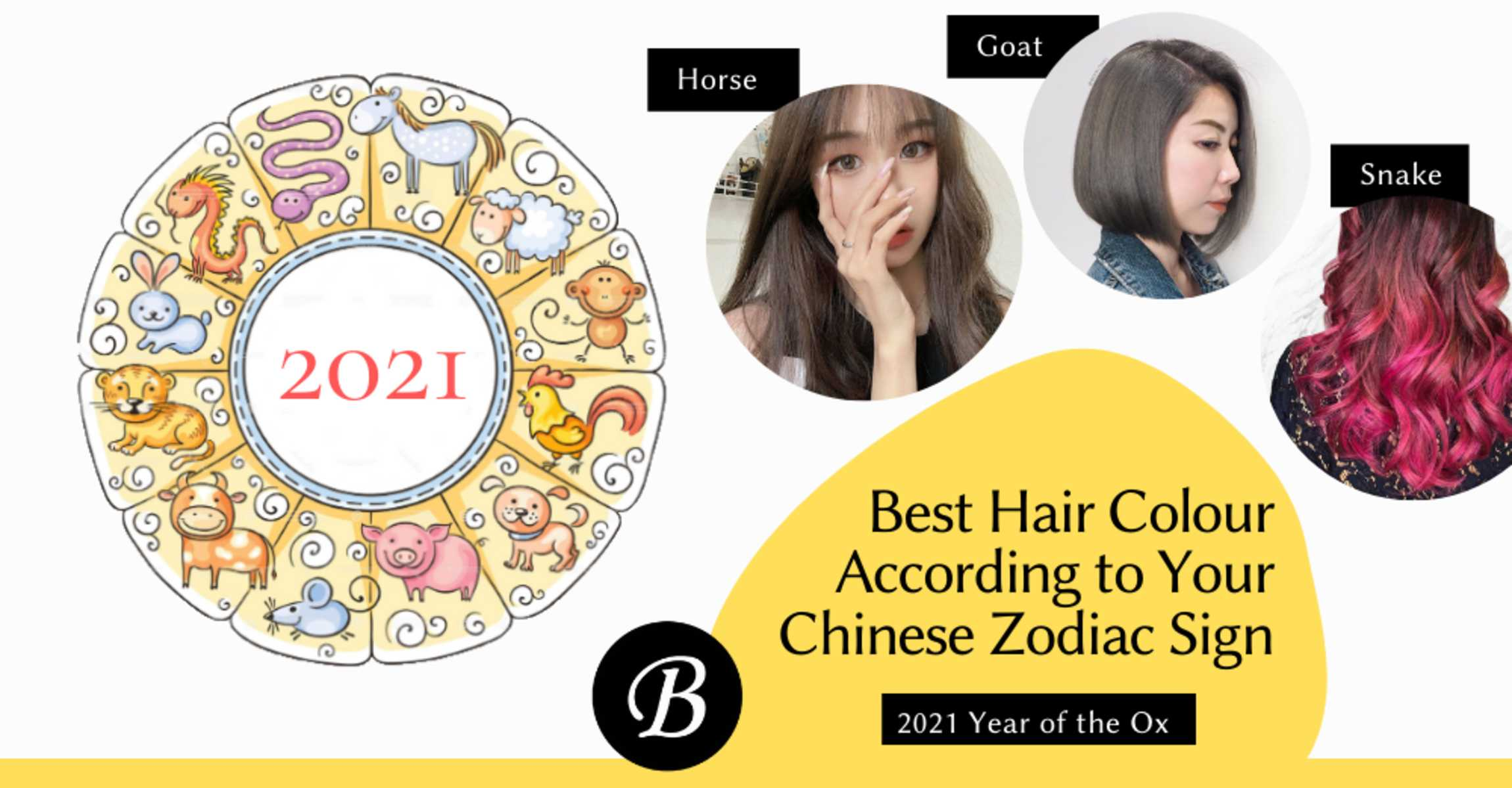 Best Hair Colours for Chinese Zodiac Sign (Updated 2021)