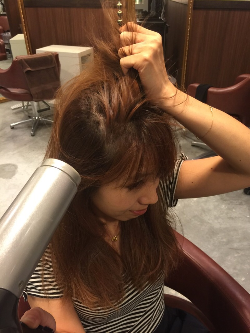 Blow Dry the Hair roots in the Opposite Direction
