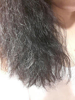 dry frizzy hair