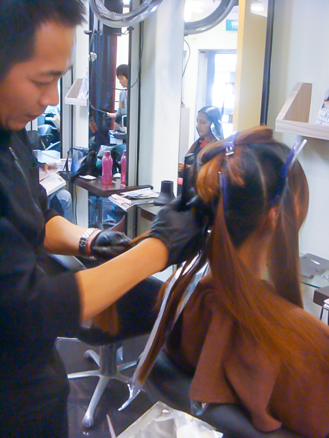8. Applying Hair Colour section by section