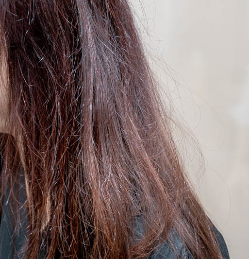 Dry and Frizzy Hair Before Organic Keratin Treatment