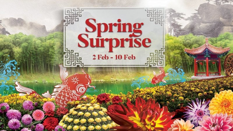 Spring Surprise at Gardens by The Bay