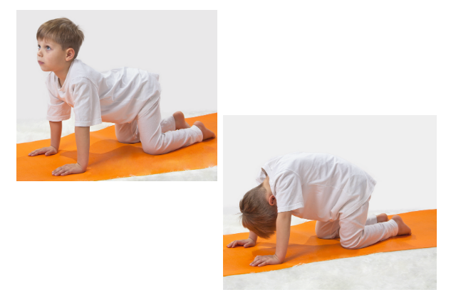 Yoga Pose Cat and Cow for Kids