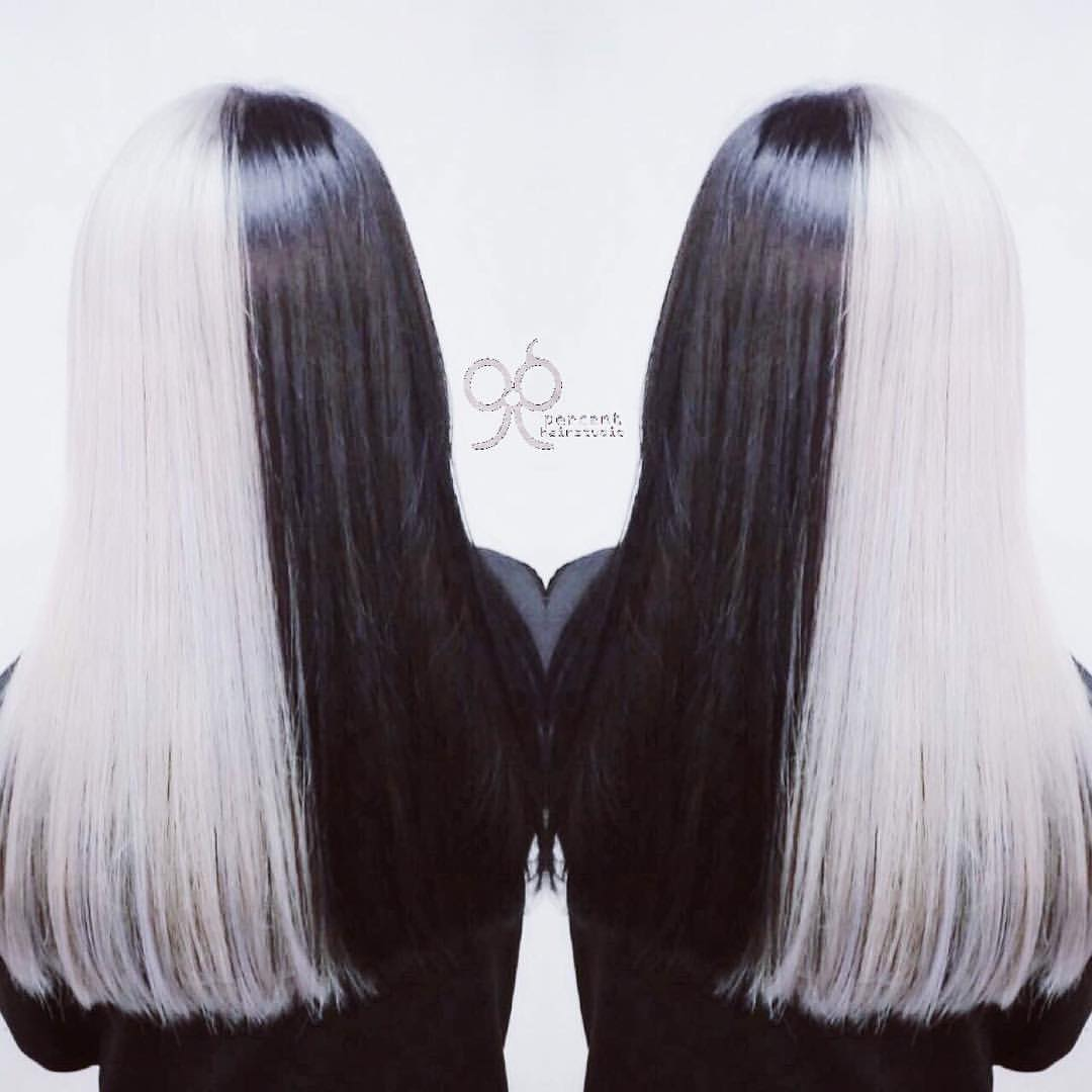 Two Toned Grey and Black Hair Colour