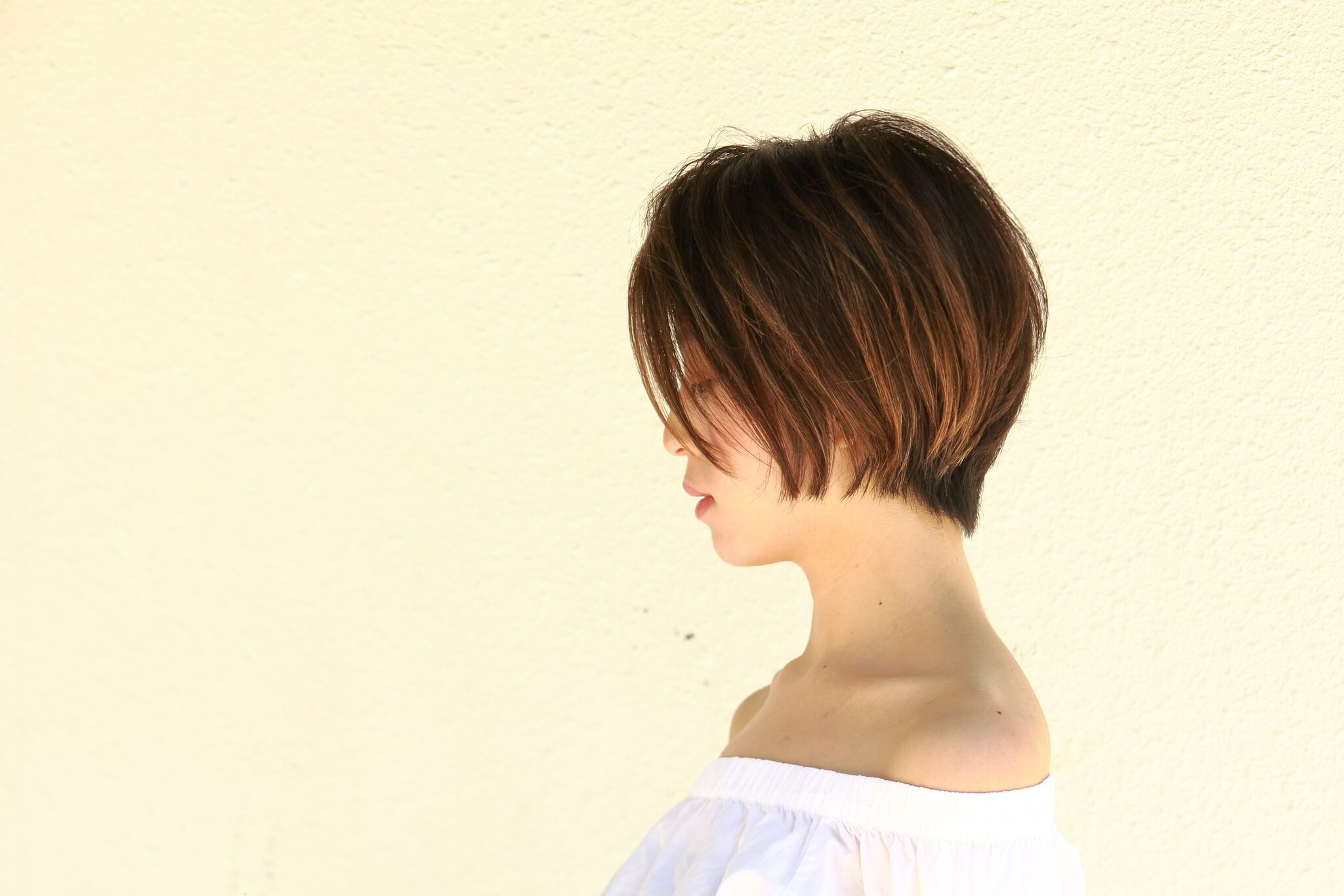 Short Haired Brown Highlights