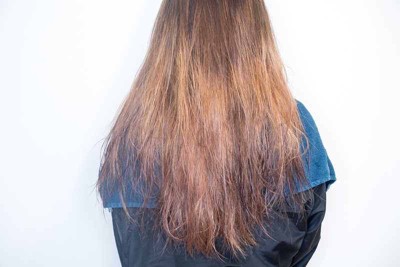 Dry Frizzy Damaged Hair From Hair Styling