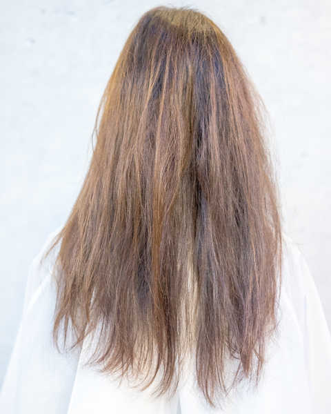Dry and Frizzy Damaged Hair Before Fukugen Treatment at Rubik Salon