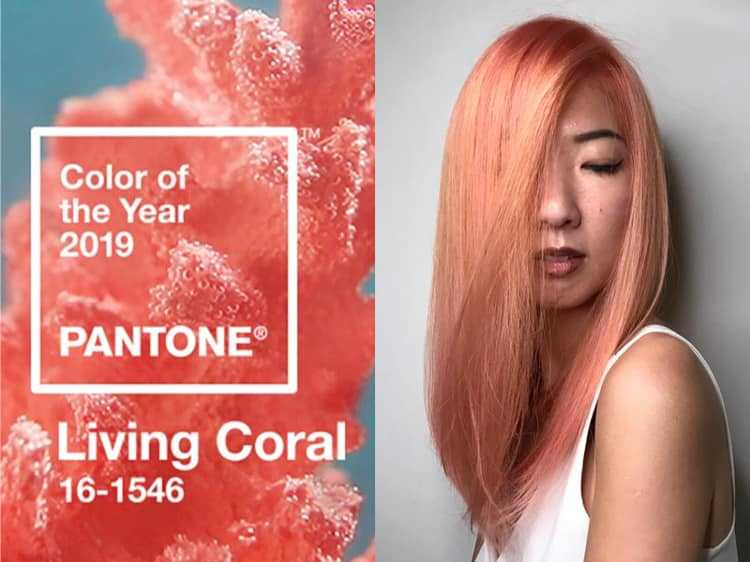 Coral Hair Colour by Picasso Hair Studio