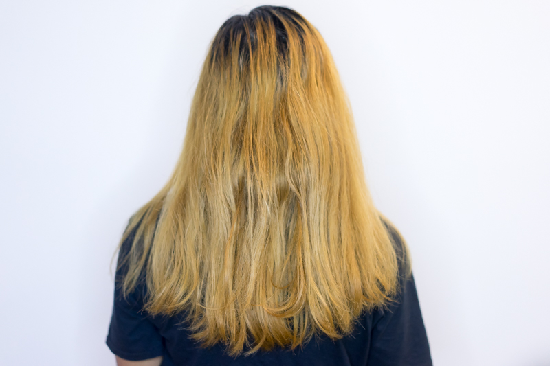 Bleached Damaged Hair Before AirTouch Highlights