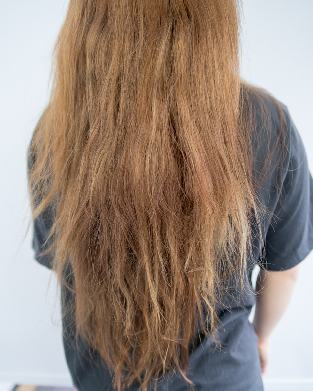 Damaged, Brittle and Frizzy Hair After Lots of Hair Dye
