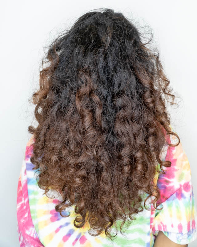 Dry and Difficult to Maintain Curly Hair Before Haircut at Ann's Studio